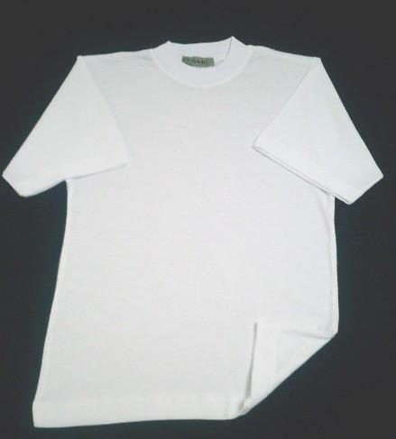 men's t-shirt 100% cotton