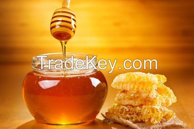 Nature pure Honey origin Ukraine