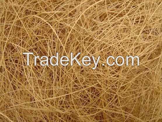 Bangladeshi High quallity coconut fiber