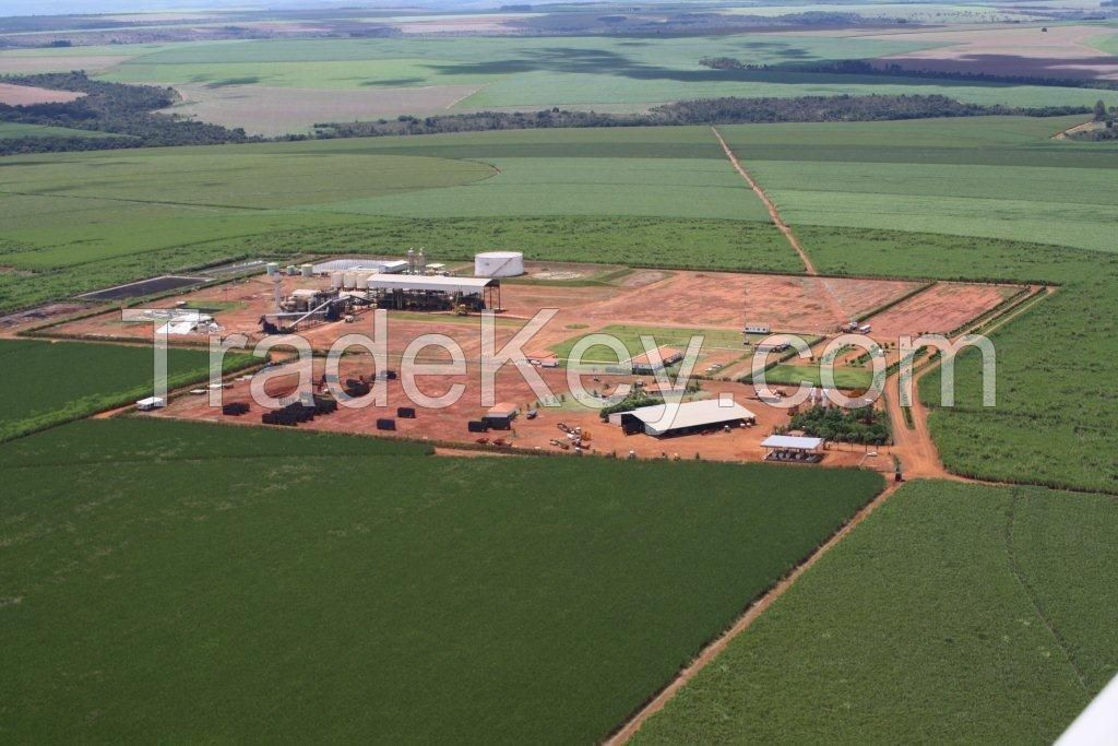 Investor for Sugar & Ethanol Mill, Brasil