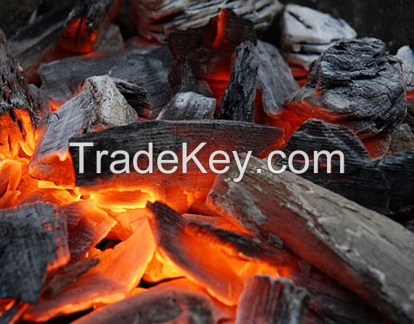 hornbeam charcoal