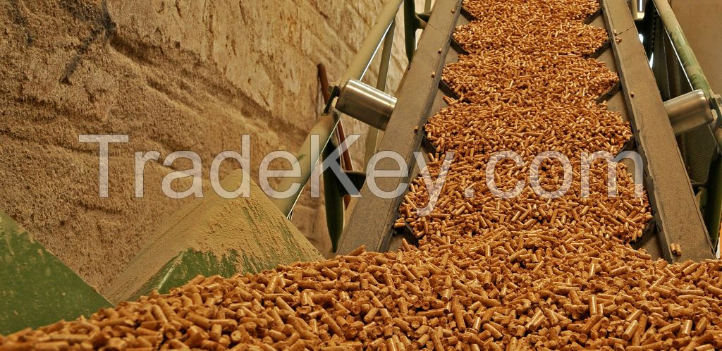 Premium quality Din Plus Beech, fir, pine, spruce wood pellets