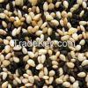Sesame Seeds, Sunflowe...