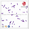 Lactobacillus Plantaru...