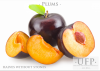 BQF Plums (halves with...