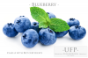 BQF Blueberries Class ...