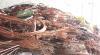clean and sort scrap copper