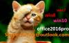 Win7 Pro Coa Loble Sti...