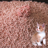 Peach Scent Cat Litter