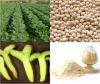 Pure Natural Soybean E...