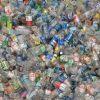 pet bottle scrap