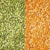 Red Lentils / Green Le...