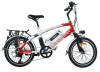 Ally Framed Electric Bike (2014 New Model)