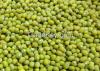 Crop Green Mung Beans