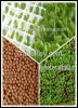 soilless agriculture r...