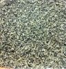 dried green tea leaves,green tea importers,green tea buyers,green tea importer,buy green tea,green tea buyer