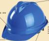 Helmet & Face shield