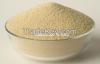 Soya Flour Toasted