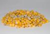 Yellow Corn ...