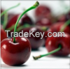 Fresh Quality Cherries