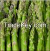 Fresh Quality Asparagus