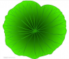 Natural Lotus Leaf Ext...