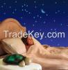 Twilight Turtle Night Light Stars Projector Lamp Toy
