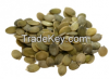 Pumpkin Seeds Karnels ...