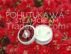 Pohutukawa Steam Cream Made In New Zealand- beauty, Healthy luxury skin-care lotion/cream