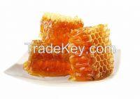Sidr Honey High Quality
