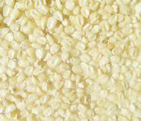 White Corn/ Maize Grade #: 1 (Non GMO)