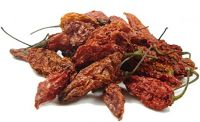 Fresh Dried Red Chilli For Sale With Good Price