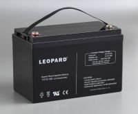 LONG-LIFE BATTERY with designed life up to 10~15 years in float service
