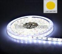 DC12V/24V 5050 white/warm white color Led Flexible Strip Light