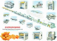 Complete Hard and Soft Biscuit Production Line (HW-600)