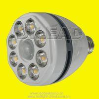 LED Motion Detector Lamp