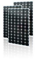 Mono-crystalline Solar Modules