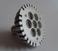 LED PAR30 Spot