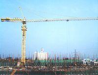 QTZ30 tower crane+COMPETITIVE PRICE