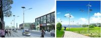 Solar Street Light/Solar-wind complementary street light