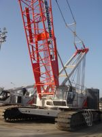 Crawler crane QUY260