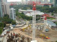 PTT293(7427) Flat-top tower crane
