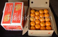 Fresh Pakistani Orange/Mandarin