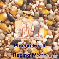 Twt Pigeon Food / Dove Food / Pigeon Feed