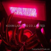 300W Led Grow Panel Light