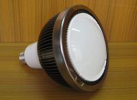 LED Down Lamp