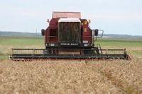 "grain harvester KZS-1218 ""PALESSE GS12"""