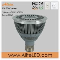 PAR30 led spot light