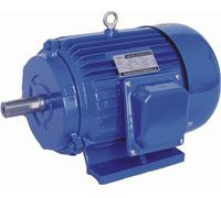 Three Phase Electric Motors (y Series)