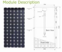 Monocrystalline Solar Modules 175W